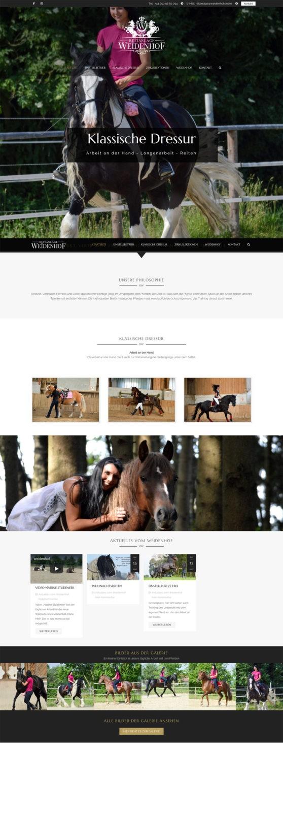 Referenz Reitanlage Weidenhof Webseite