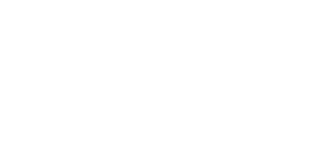 Kunde plusleasing neue Seite 2019